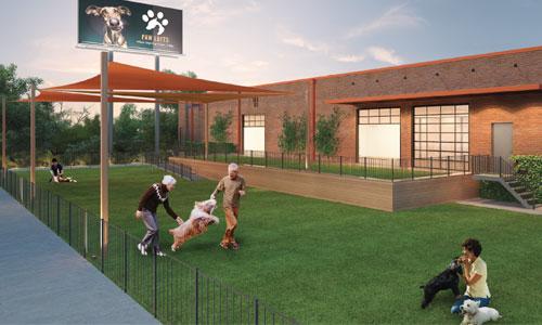 Paw Lofts Pet Resort   Dallas, TX   Georgetown, TX